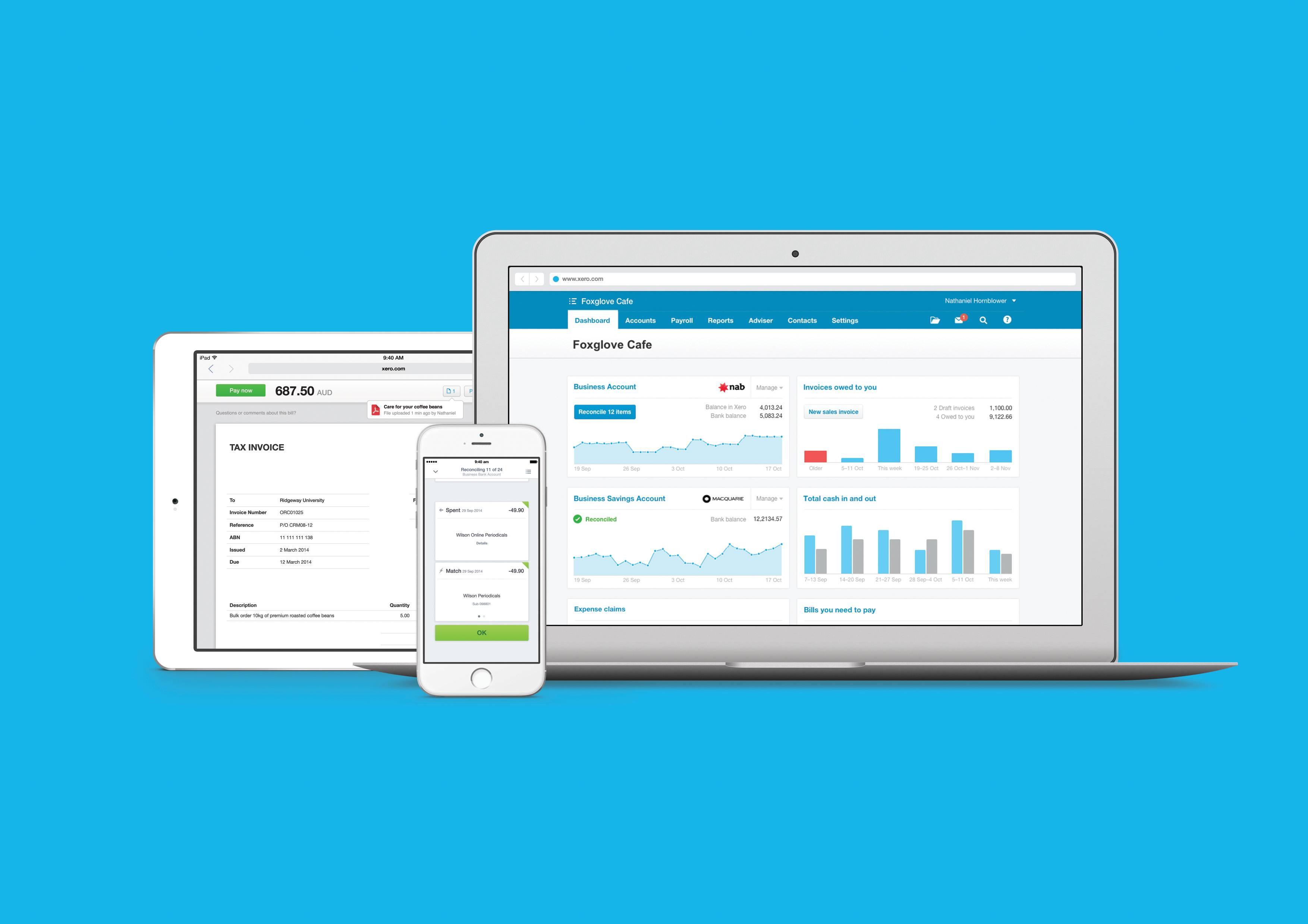 Xero online multiple device